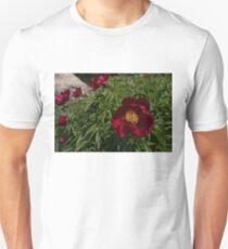Deep Red Peony Garden T-Shirt
