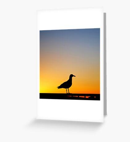 Sea Gull Sunset Greeting Card