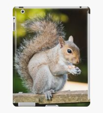 Squirrel On Fence 2 iPad Case/Skin