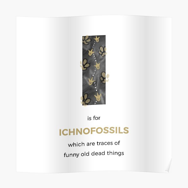 I is for Ichnofossils Poster