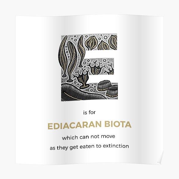 E is for Ediacaran Biota Poster