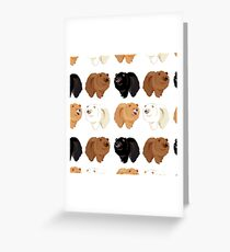 Chow Chow Greeting Card