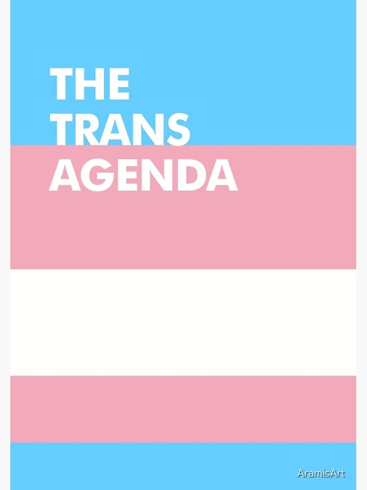 Trans Agenda by AramisArt