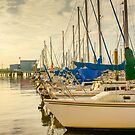 Cooper River Marina Sunrise by Wendy Mogul