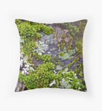 Moss 1 Throw Pillow