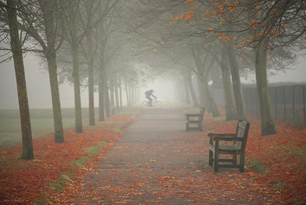 And then came the fog... by Ursula Rodgers