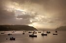 The Soft Light of Morning, Portree, Skye by Ursula Rodgers