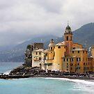Italian Fishing Village by TerrillWelch