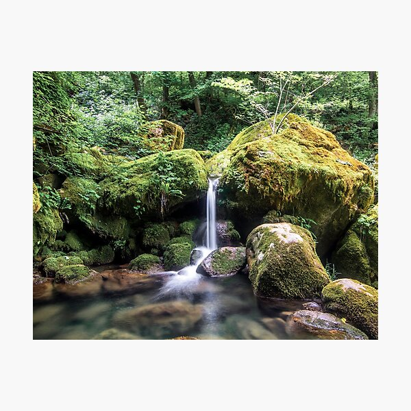 Little stream in the Forest Photographic Print