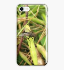 Black Fly on a Leaf iPhone Case/Skin