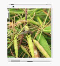 Black Fly on a Leaf iPad Case/Skin