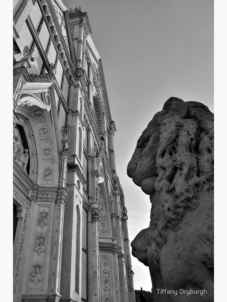 Guarding Santa Croce by Tiffany