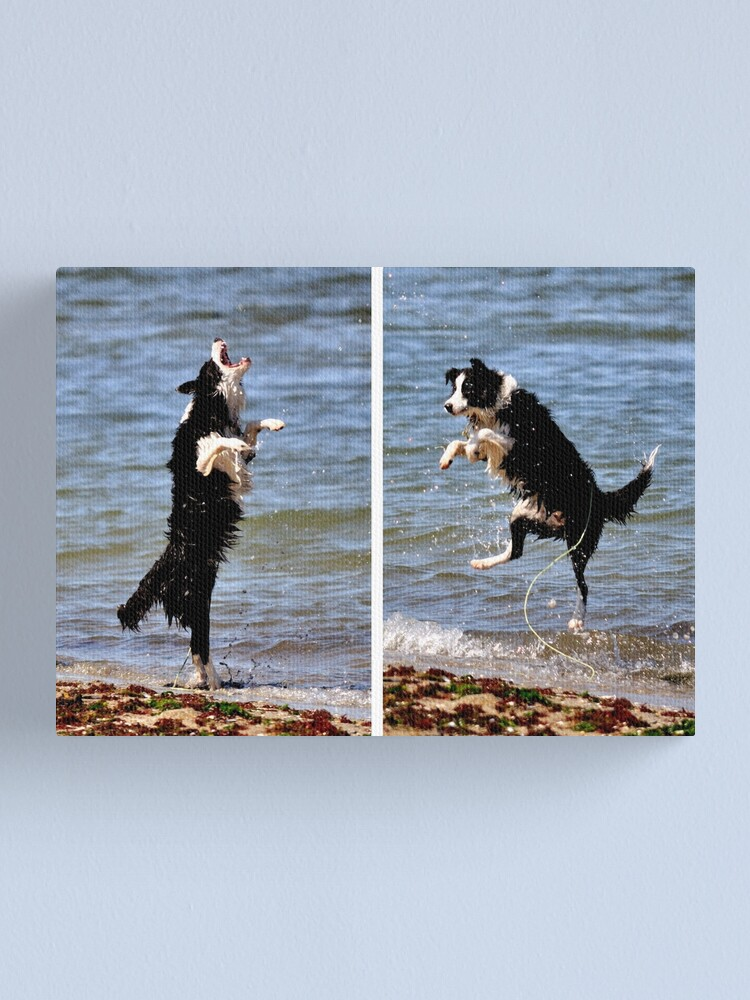 Alternate view of The All Singing, All Dancing Wonder Dog! Canvas Print