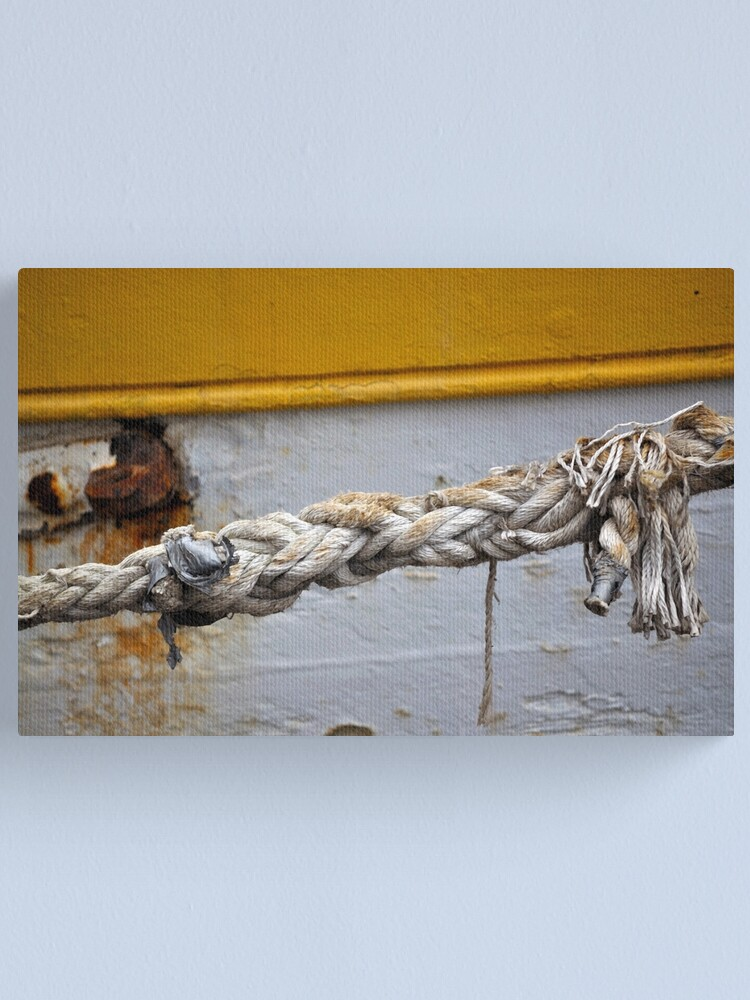 Alternate view of Money for old rope Canvas Print