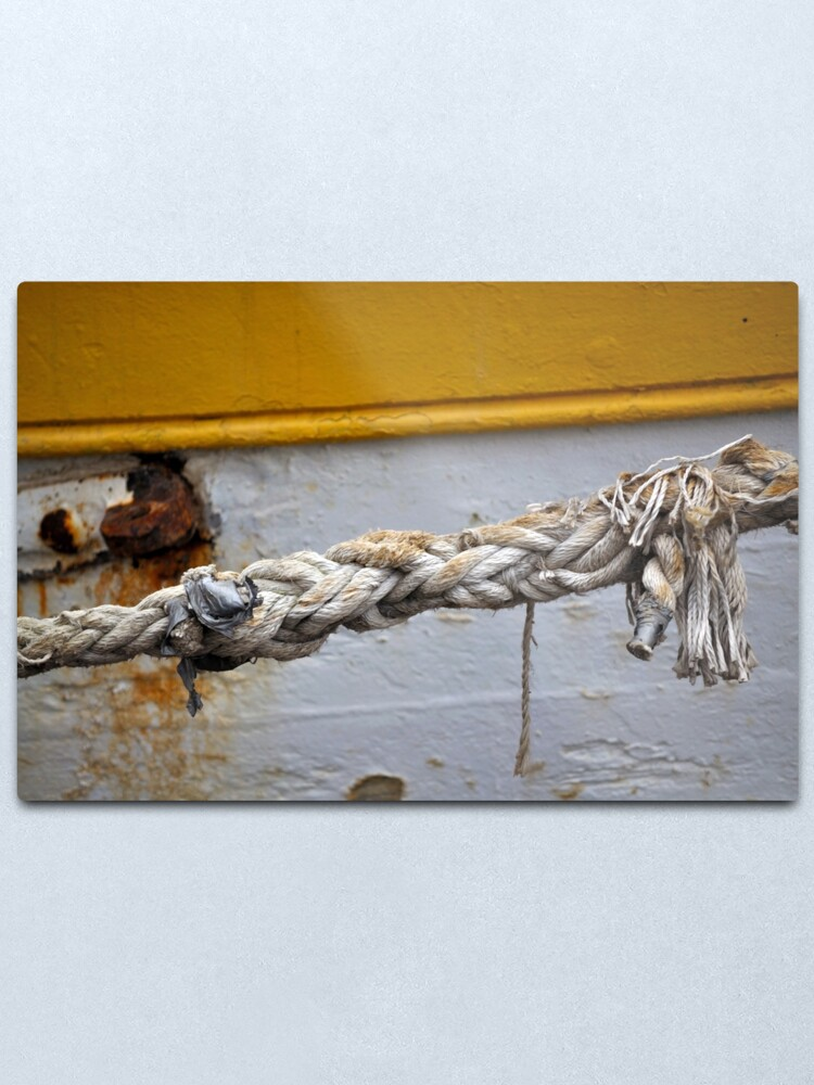 Alternate view of Money for old rope Metal Print