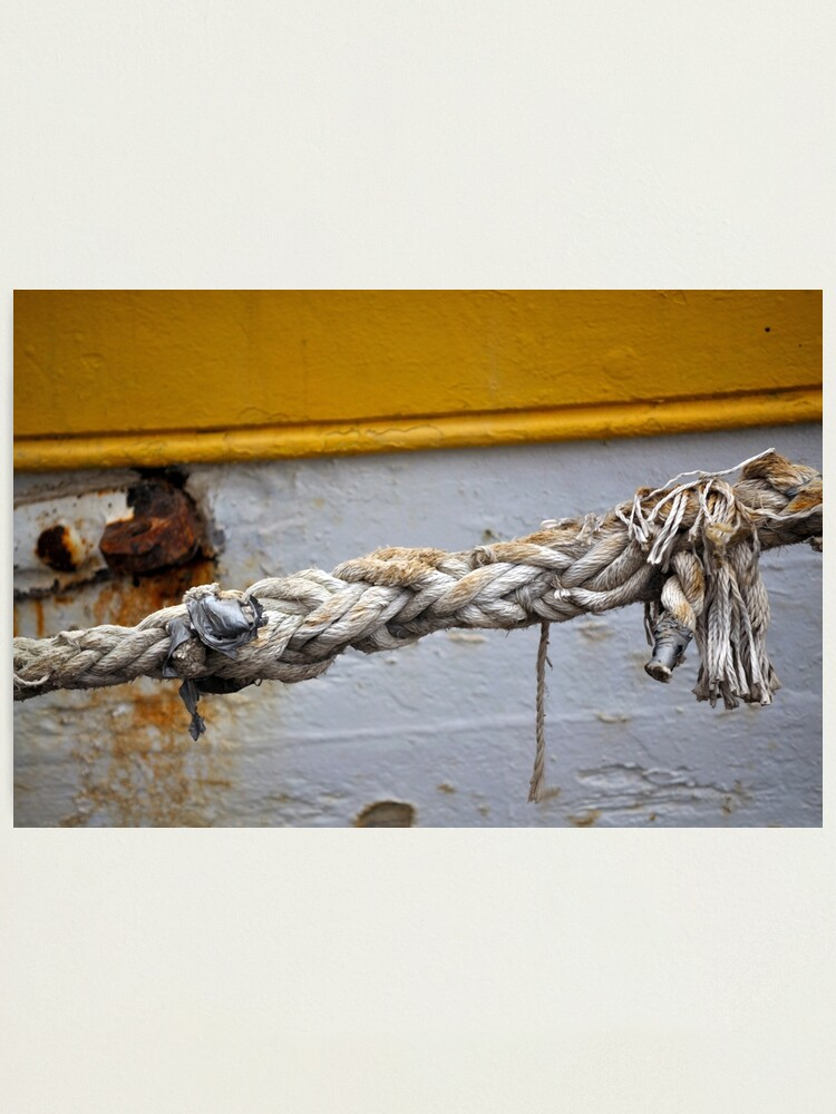 Alternate view of Money for old rope Photographic Print