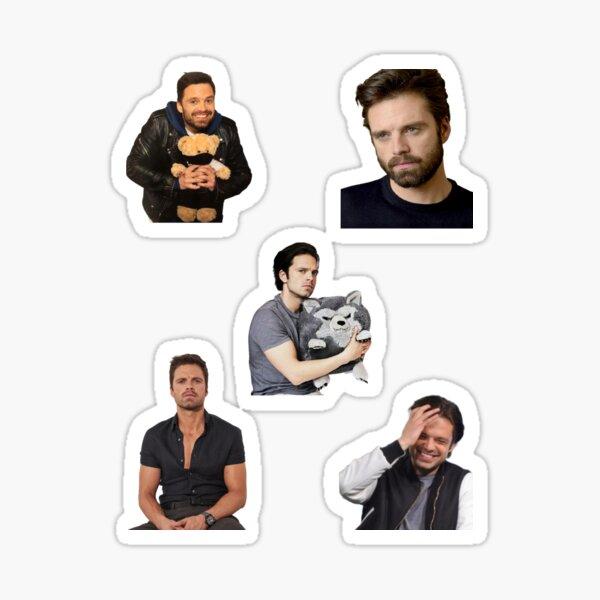 Cute Sebastian Stan  Sticker