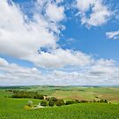 Wheatfield in the Palouse by Jeff Goulden