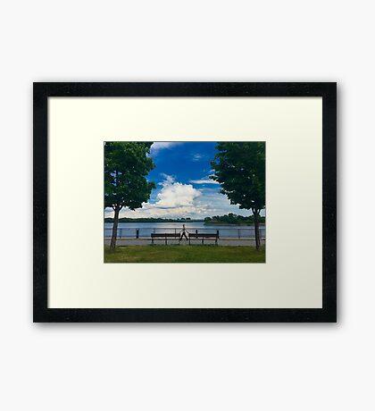 A Walk Between Trees Framed Print