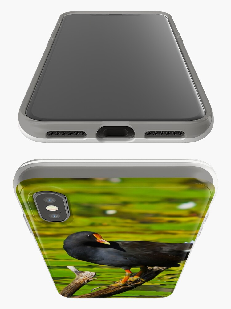 Alternate view of Dusky Moorhen iPhone Case & Cover