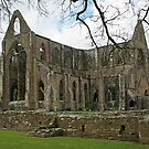 Tintern Abbey by RedHillDigital