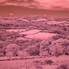 Dartmoor IR by Neil Bygrave (NATURELENS)