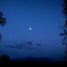 Blue sky by shelleybabe2
