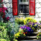 Flowers and Red Shutters by Susan Savad