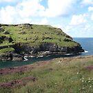 A stretch of coastline at Tintagel by Roberta Angiolani