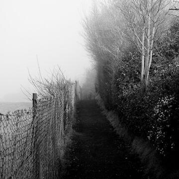 Morning Path by macstrat