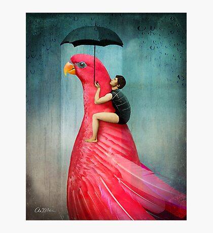 Under My Umbrella Photographic Print