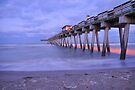 Venice Pier by Kim McClain Gregal