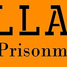 Hillary for Prisonment by ayemagine
