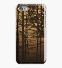 Monument Lake, As Is iPhone Case/Skin