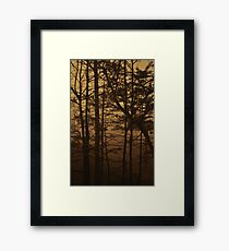Monument Lake, As Is Framed Print
