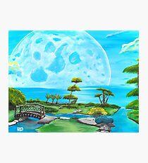 Moon Garden Photographic Print