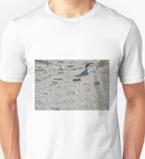 Mama and Baby Tern, As Is Unisex T-Shirt