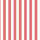 Pink Stripes by thetangofox