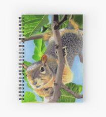 Beautiful Squirrel in Tree Spiral Notebook