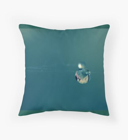 a drop on a spider's web Throw Pillow