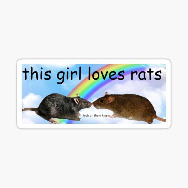 Pegatina para el parachoques Esta chica ama las ratas Pegatina
