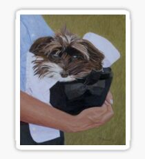 """""""I Got Carried Away"""" Puppy Dog in Equestrian Helmet Painting Sticker"""