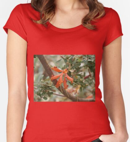 Lambertia inermis Women's Fitted Scoop T-Shirt