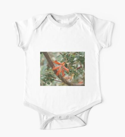 Lambertia inermis Kids Clothes
