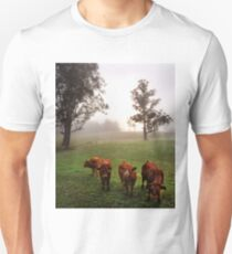 Kangaroo Valley T-Shirt