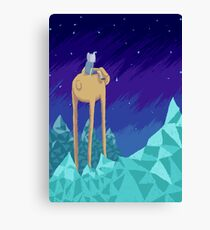 Adventure Skies Canvas Print