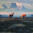 Shadows of Creation by Dieter Carlton