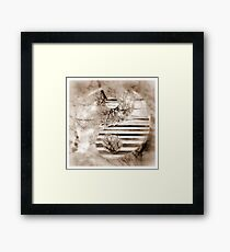 Yin Yang Softness and Transparency in Sepia Framed Print