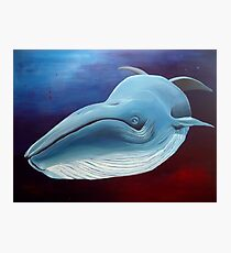 Little Whale Photographic Print
