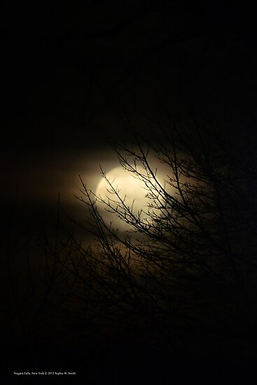 Full Moon Behind Tree Branches | Niagara Falls, New York by © Sophie W. Smith